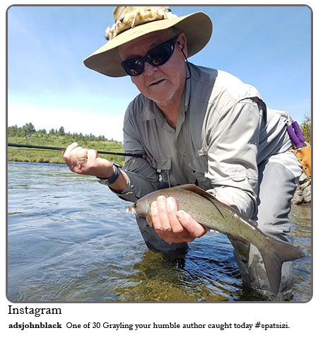 One of 30 Grayling your humble author caught today #Spatsizi